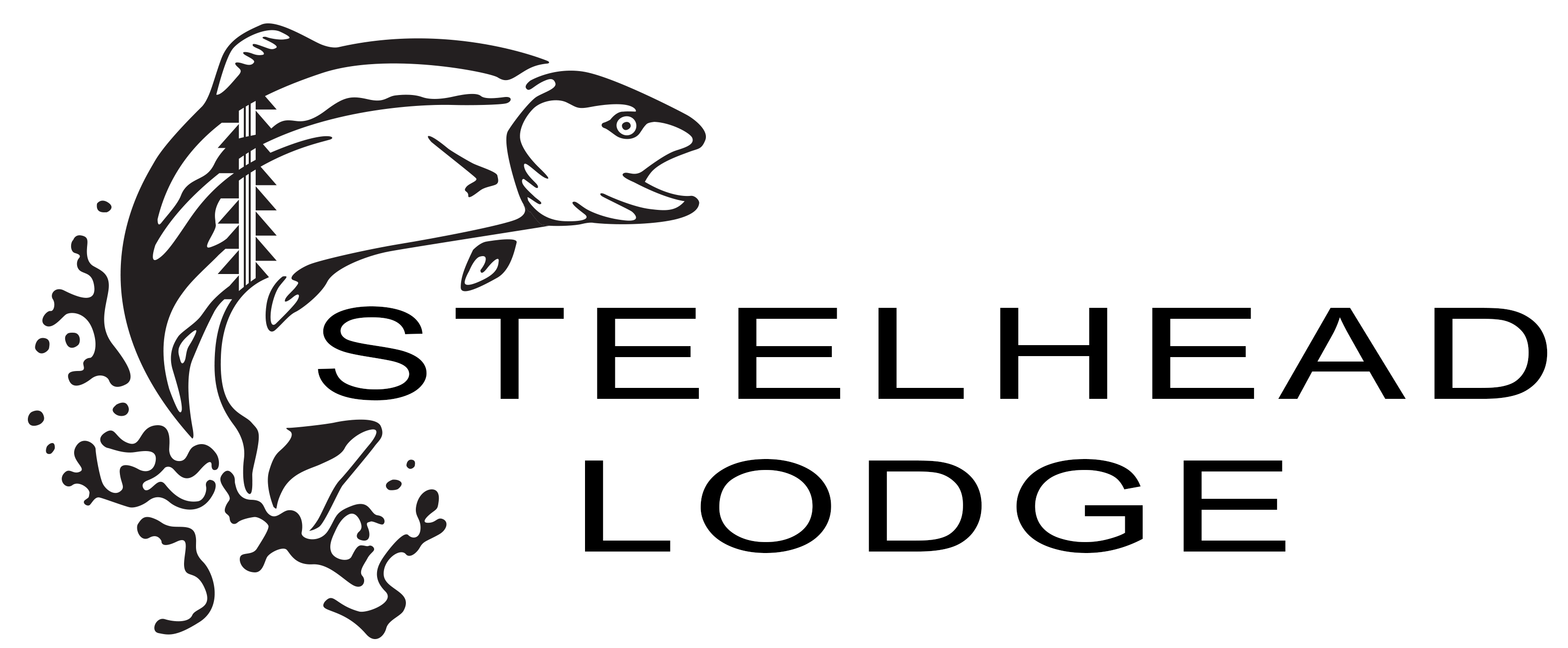 STEELHEAD LODGE